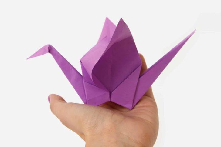 origami fun facts, PrintWorks